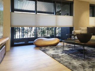 都市裡的暮色森林|半透光蜂巢簾.全遮光蜂巢簾 MSBT 幔室布緹 客廳配件與裝飾品 布織品 White