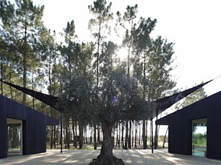 Banema S.A. Bungalow Engineered Wood Wood effect