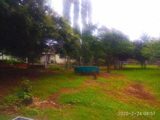 Tukang Taman Surabaya - Tukang Taman Bermain dan Rekreasi Tukang Taman Surabaya - Tianggadha-art Taman Tropis Batu Kapur Multicolored