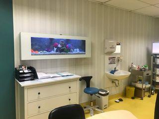 Corporate Office Seazone Clinics