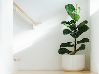 Interioforest Plantscaping Solutions Stairs