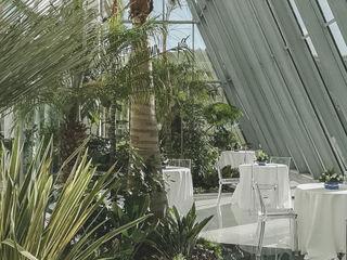 Green House aziendale Giambenini srl Paesaggio d'interni