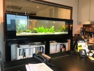 See Through Aquarium - Office Seazone Office buildings