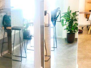 Decoración de oficinas, casas, interiores…etc Paisajismo y Mantenimiento Hibiscus
