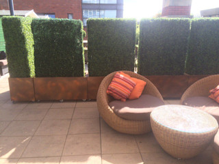 Artificial Boxwood Planters in Commercial Landscaping Sunwing Industries Ltd Commercial Spaces Wood-Plastic Composite Green