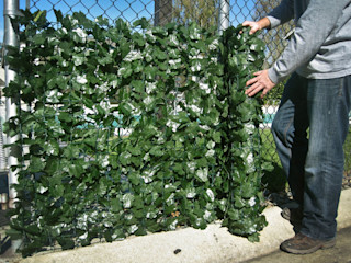 Faux Ivy Screen Rolls Sunwing Industries Ltd Front yard Plastic Green