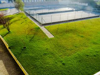Amber Star Real Estate Green