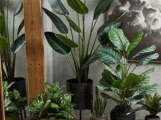 Interior Landscaping- Artificial Trees Sunwing Industries Ltd Espaços comerciais modernos Plástico Verde