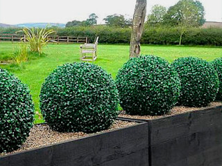 Create Little Green Space with Artificial Topiary Balls Sunwing Industries Ltd Espaços comerciais tropicais