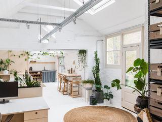 WN Studio + Store, Ashley Cross WN Interiors + WN Store Moderne Wohnzimmer