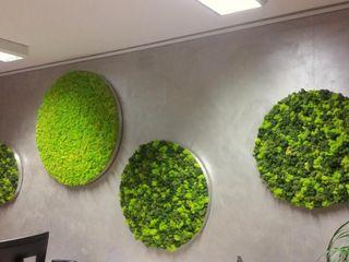 Improve Indoor Environments with Reindeer Moss Or Artificial Sunwing Industries Ltd Lojas e Espaços comerciais campestres Verde