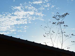 アグラ設計室一級建築士事務所 agra design room Roof