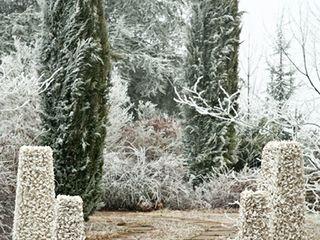 13RiCrea PRESENTAZIONE PRODOTTI/SERVIZI 13RiCrea Giardino d'inverno eclettico