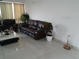 Interioforest Plantscaping Solutions Living room