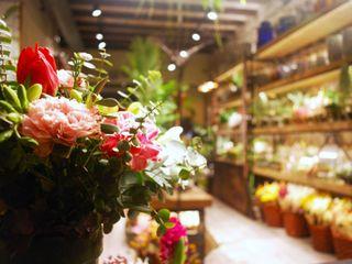 Iluminación de tiendas. Una floristería en Barcelona OutSide Tech Light Espacios comerciales de estilo industrial