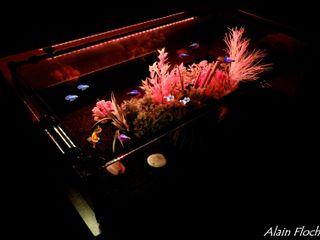 Table Basse Vitrine / Aquarium DRAGON VOLANT 95 CM en Bois Massif Noir avec Plateau en Verre Diamant Extra Clair avec Eclairage LED + Télécommande VPA DESIGN SalonCanapés & tables basses Bois massif Noir