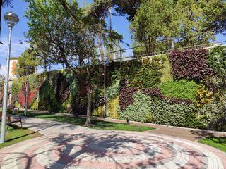 SingularGreen Musei in stile tropicale