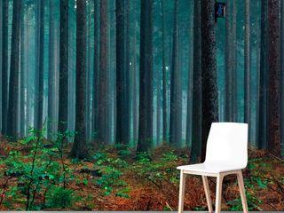 TOPAGO.pl Walls Green