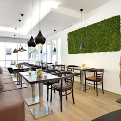 Wandgestaltung Green Freund GmbH Raumbegrünung