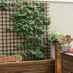 Studio Gorski Arquitetura Modern Garden