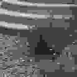 Private family garden Viridian Landscape Studio Jardines de estilo rural