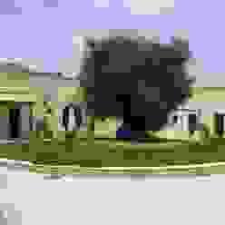 MELLOGIARDINI EXTERIOR DESIGNERS Jardines de estilo moderno