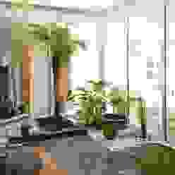 David Jiménez. Arquitectura y paisaje 庭院