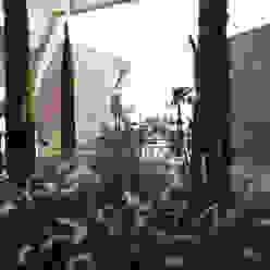 Studio BEMS Jardines de estilo moderno