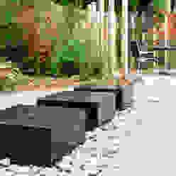 Contemporary Modern Family Garden Rosemary Coldstream Garden Design Limited 庭院