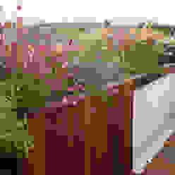 Terraza en El Encinar de la Moraleja La Habitación Verde Balcones y terrazas de estilo moderno