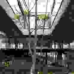 Casa | LM | Marcos Bertoldi Casas modernas