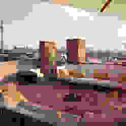 Dachterrasse Berlin Mitte Klassischer Balkon, Veranda & Terrasse von loomilux Klassisch