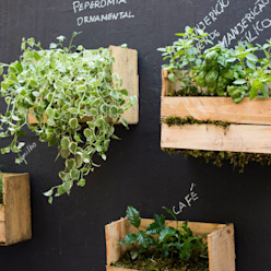 Taman Gaya Rustic Oleh Luiza Soares - Paisagismo Rustic Kayu Wood effect