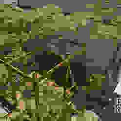 トヨタホーム庭・リガーデン ウッドデッキが主役な庭 T's Garden Square Co.,Ltd. モダンな商業空間