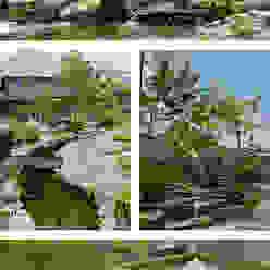 池とせせらぎのある暮らし へーベルハウス雑木の庭の作り方 T's Garden Square Co.,Ltd.