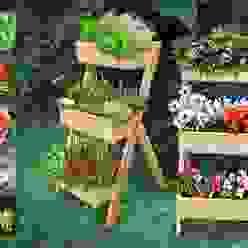 Huerta Vertical Mundo Garden Mundo Garden JardínJarrones y macetas Madera maciza Acabado en madera
