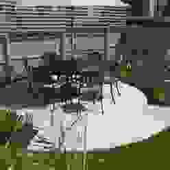 Canopy Lane Minimalistischer Garten von Aralia Minimalistisch Eisen/Stahl