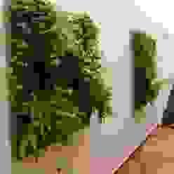 MC3 Arquitetura . Paisagismo . Interiores 庭院