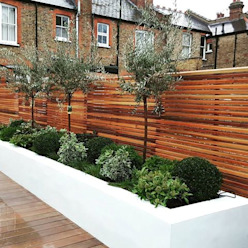 Raised Flower Beds and Ever Greens от IS AND REN STUDIOS LTD