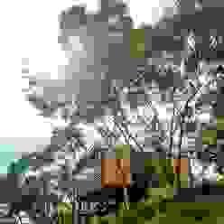 [ 行動木屋 ] Qfarm FAMWOOD 自然紅屋 現代房屋設計點子、靈感 & 圖片