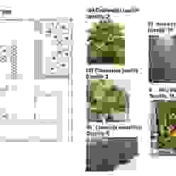Planta de jardinería Jardines clásicos de Diseño de Locales Clásico