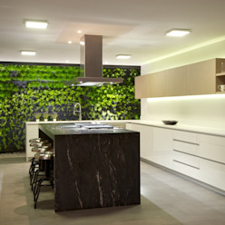 JACARANDAS HOUSE Cocinas modernas: Ideas, imágenes y decoración de Hernandez Silva Arquitectos Moderno