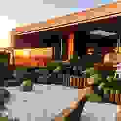 La isla de la tortuga de Jardines Japoneses -- Estudio de Paisajismo Asiático