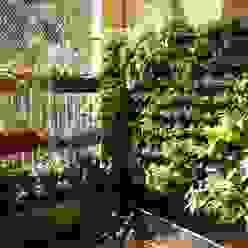 Vertical Garden Interioforest Plantscaping Solutions Balcony