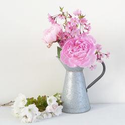 Zinc Pitcher Vase With Handle Lilac Coast HaushaltAufbewahrung