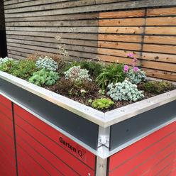 Gartenschrank mit Bepflanzung :: Garten[Q]Teras+ Garten-Q GmbH Dach