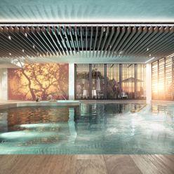 Swimming Pool - CGI Aqua Platinum Projects Classic style pool
