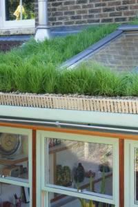 Organic Roofs: modern tarz Evler