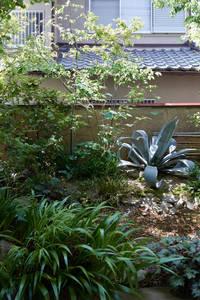 宝塚の庭: GREENSPACEが手掛けた庭です。