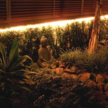 modern Garden by Simbiosi Estudi de Paisatgisme